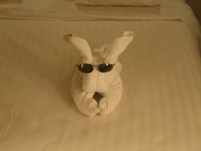 Towel Bunny in cabin on Sunday night