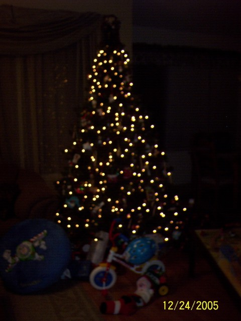 Slightly out of focus tree, nice effect!